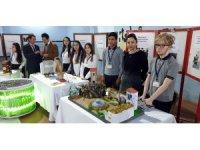 Nazilli'de GEKA desteğiyle 'Geleceğim Mesleğim' proje pazarı kuruldu