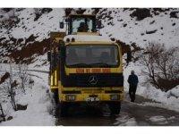 Şırnak'ta kar kalınlığı 2 metreye ulaştı, köy yolları ulaşıma kapandı