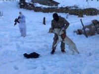Şırnak'ta kayıp çifti arama çalışmaları sürüyor