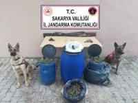 Sakarya'da 11 kilogram esrar ele geçirildi: 1 gözaltı