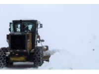 Bingöl'de  kar 100 köy yolunu ulaşıma kapattı