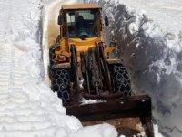 Yüksekova'da kar kalınlığı 5 metreyi geçti