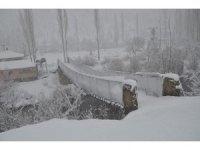 Şırnak kar altında kaldı