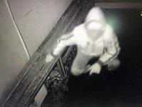 Bilecik'te görünmemiş hırsızlık