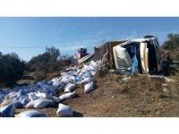 Çanakkale'de yem yüklü kamyon devrildi: 1 yaralı