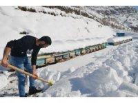 Şırnak'ta arıcıların zorlu kış mesaisi devam ediyor