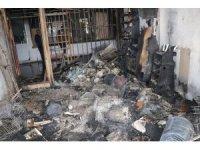 Yozgat'ta pet shopta yangın, çok sayıda hayvan telef oldu