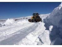 Van Büyükşehir Belediyesinden 'karla mücadele' açıklaması