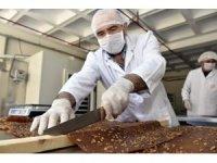"""""""Tüketici değil üretici olmalıyız"""" dedi, organik pestil üretti"""