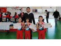 Karaman jimnastik ve badminton analig takımları bir üst turda
