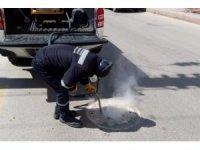 Kırıkkale Belediyesi ilaçlama çalışmalarına başladı