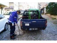 Ayvalık Belediyesi'nden sivrisinek ile şimdiden amansız mücadele