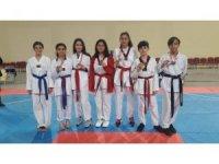 Okullar arası Yıldızlar Taekwondo İl Birinciliği müsabakaları tamamlandı