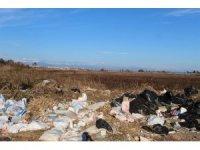 Bir zamanlar kuş cenneti olan Yamansaz atık ve kirlilik tehdidi altında