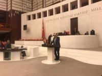 Milletvekili Kartal, Van'daki  doğal afetleri TBMM'de anlattı