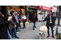 Türkiye'de daha büyüğü yok! Onu görenler şaşkınlıklarını gizleyemedi