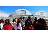 Öğrenciler çiflik evi ve serada gözlemde bulundular