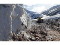 Van'da mart ayında karla mücadele çalışması