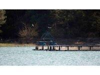Kozan Barajı Gölü'ne 200 çift martı bırakıldı