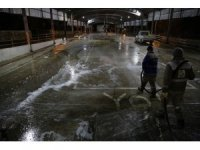 Haliliye'de pazar yerleri dezenfekte edildi