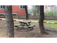 İstanbul'da Korona virüs nedeniyle piknik alanları boş kaldı