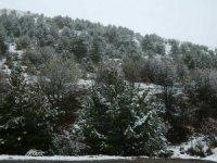Posof'ta yüksek kesimlerde kar etkili oluyor