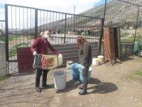 DKMP Bitlis Şubesi tarafından hayvan barınakları denetlendi