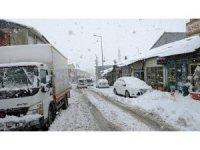 Bingöl'de kar yağışı, 281 köy yolu kapandı