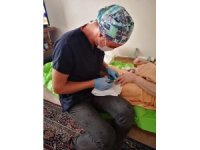 Odunpazarı Belediyesi koronavirüse karşı hasta, yaşlı ve engellilerin yanında