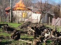 Bingöl'de yangın, baraka kullanılamaz hale geldi