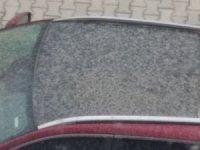 Aydın'a çamur yağdı