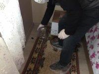 Aydın'da ölü yarasanın bulunduğu ev dezenfekte edildi