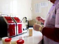 Amasya'da mart ayında günlük 67 ton çiğ süt toplandı