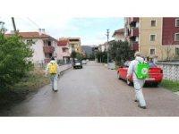 Altınova, karış karış ilaçlanıyor