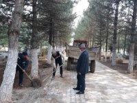 Altıntaş'ta mezarlık temizleme çalışmaları