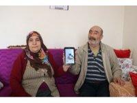 """""""10. çocuğumuzdu"""" dedikleri 'Çınar' isimli kediyi arıyorlar"""