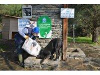 Sokak hayvanlarına korona desteği