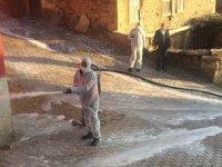 Karantinaya alınan Çakırlar köyüne dezenfekte desteği