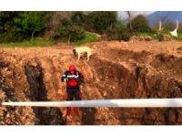 Kuyudan kurtarılan yavru köpek annesine koştu