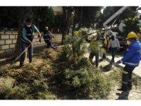 Aydın Büyükşehir ve Nazilli Belediyesi'nden ortak çalışma