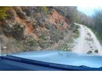 Av koruma çalışmaları esnasında ekiplere yakalanan Karaca'nın kaçış anları kamerada