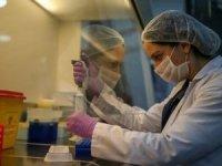 Türkiye'de koronavirüsten can kaybı 4 bini aştı