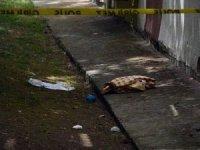 İstanbul'da site bahçesinde bebek cesedi