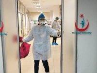 Türkiye'de koronavirüsten son 24 saatte 31 can kaybı