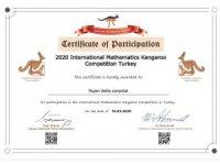 Çınarlı 4'üncü sınıf öğrencisi Uluslararası Kanguru Matematik Yarışmasında 1'inci oldu