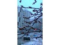Malatya'da zirai don uyarısı