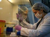 Türkiye'de coronavirüsten 24 saatte 29 can kaybı