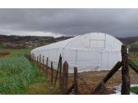 Büyükşehir'den çiftçilere yüzde 50 hibeli sera naylonu desteği