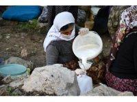 Şırnak'ta berivanların zorlu mesaisi başladı