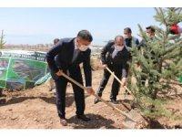 Mehmetbeyoğlu ve Arvas, 'Kent Ormanı'ndaki çalışmaları inceledi